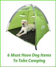 When the weather is great, it's a terrific time to go camping and a good time to bring your dog along.  But dogs need certain items besides the absolute essentials of food, water, and a leash when they go camping. Here are six camping items for dogs that I would not be without and would suggest you consider for your dog to keep them comfortable and safe.... - See more at InventorSpot.com
