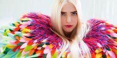Oiseau de paradis. Nelly Saunier