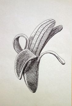 Pencil Art Drawings, Art Drawings Sketches, Drawing Skills, Drawing Techniques, Hatch Drawing, Hatch Art, Drawing Apple, A Level Art Sketchbook, Stippling Art