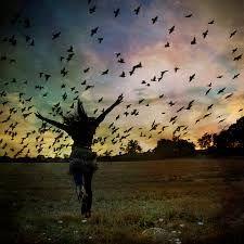 Libertação...