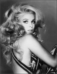"Ann Margret born 1941 in Sweden, this Golden Globe winning actress starred in such movies as Bye Bye Birdie, Stagecoach, and Viva Las Vegas. Hollywood gave her the infamous nickname ""Sex Kitten"". Divas, Beautiful Celebrities, Beautiful People, Beautiful Women, Gorgeous Lady, Vintage Hollywood, Classic Hollywood, Hollywood Icons, Old Hollywood Glamour"