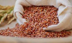 Arroz vermelho integral #embrapa #redrice #arrozvermelho