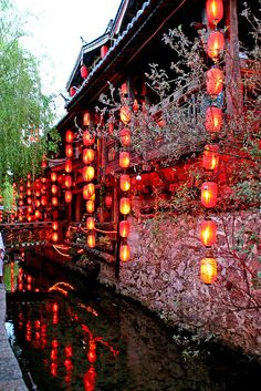lanterns hang in Lijiang, China Lijiang, Aesthetic Japan, Japanese Aesthetic, China Travel, Japan Travel, Vietnam Travel, Image Japon, Cultural Architecture, Gothic Architecture