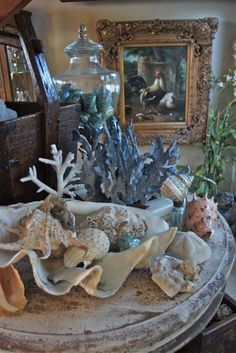 Sue Murphy Designs - Life as a House - Decorating with SeaShells