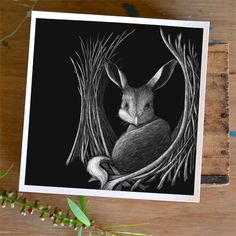 I believe the endangered bilby should be cherished like a treasure in a bowerbird's bower. This high quality giclée print is reproduced from an original scratchboard illustration by Renée Treml. Each print is signed and numbered by the artist with a limited edition of 100 prints. This print is available in small (15cm x 15cm) …