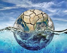 What Water Shortage Means for the Environment - The Wellness Project