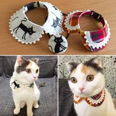 14 finest dog clothes xsmall girl dog clothes with long sleeves doggylove doglovers dogclothes moda para animais roupas para gatos llllll Pet Shop, Girl Dog Clothes, Animal Clothes, Dog Clothes Patterns, Dog Crafts, Cat Accessories, Fashion Accessories, Pet Fashion, Pet Costumes