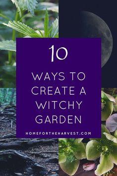 Permaculture, Witchy Garden, Gothic Garden, Victorian Gothic Decor, Garden Spells, Hippie Garden, Landscape Arquitecture, Potager Bio, Witch Herbs