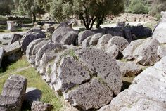 """Stacks of """"cookies"""" - Olympia, Greece"""