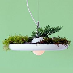 Fab: Object Interface: The Plantable Light Fixture