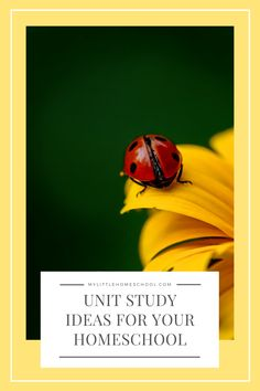 Unit studies are a great way to direct your homeschooling week. In this post you'll find some ideas that are sure to delight and engage your kids! #homeschool #homeschooling #unitstudy #unitstudyideas The Very Hungry Caterpillar Activities, The Secret Of Kells, Study Board, Learning Goals, Fun Songs, The Good Dinosaur, How Train Your Dragon, Stem Activities, How To Become