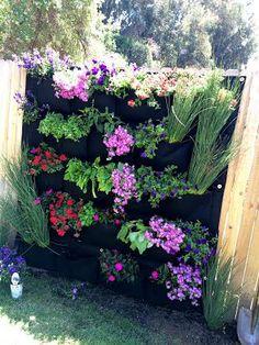 images about Gardening on Pinterest Herbs garden