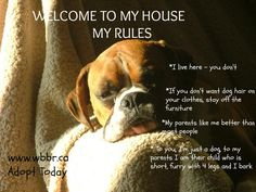 our house our rules :)