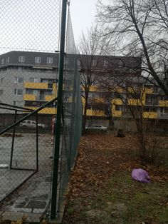 Bratislava, Sidewalk, Gardening, Walkway, Garten, Lawn And Garden, Walkways, Horticulture