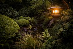 Summer in the Portland Japanese Garden. Beat the heat and escape Portland for a day of serenity.