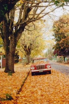 Autumn in Portland, Oregon. (1964 Studebaker Lark in photo).