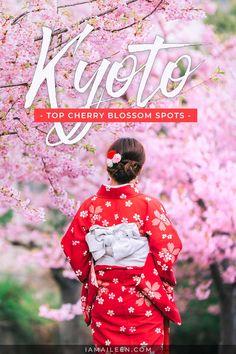 Kyoto Cherry Blossom Spots: 15 Best Sakura Hanami Viewing Locations (Tips & Travel Guide) Japan Travel Guide, Asia Travel, Travel Guides, Travel Tips, Japan Spring, Cherry Blossom Season, Discount Travel, Amazing Adventures, Plan Your Trip