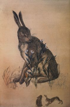Philip Webb, drawing of hare for The Forest tapestry for Morris & Co.