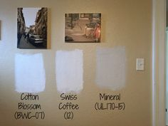 The Best Behr White Paint Colors Neutral Cotton Blossom Swiss Coffee
