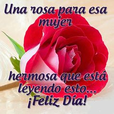 Love In Spanish, Good Morning In Spanish, Good Day Messages, Morning Messages, Morning Prayers, Good Morning Greetings, Good Morning Quotes, Romantic Humor, Love Quotes