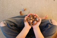 Do your kids play with nature?  Here are a collection of toys in your backyards. #parenting #kids