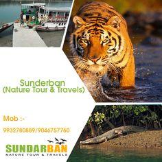 #Sunderban (Nature Tour & Travels) Suraj Das Mob :- 9932780889. visit: www.sundarbannaturetour.com