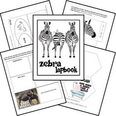 Zebra Zoobook Lapbook; matches One Small Square: African Savannah