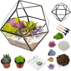 "7""x6"" Geo Glass Succulent Terrarium - Fuchsia/Green / Amethyst Geode"