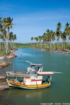 Rio Cocuripe, Município de Alagoas