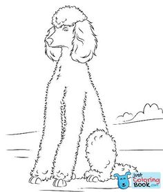 Poodle Dog Coloring Pages Printable For Free Dog Coloring Page
