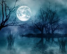 The moon hanging over a marsh