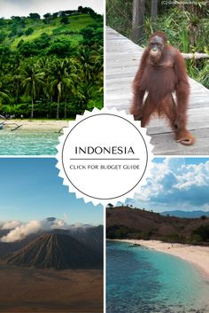 Detailed Indonesia guide - cost of travel in #Indonesia, accommodation, transport, food, nightlife and attractions here: http://gobackpacking.com/travel-guides/indonesia/money-costs/ #SoutheastAsia #backpacking