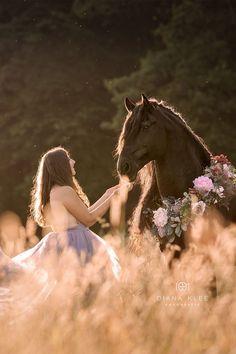Du & dein Pferd - Kuschelbild im Zauberlicht Friese Cute Horses, Pretty Horses, Horse Love, Beautiful Horses, Horse Senior Pictures, Pictures With Horses, Horse Photos, Senior Pics, Horse Girl Photography