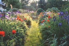 """Keeping Things Too Neat:  Wildlife is naturally unruly, so your property should reflect that. """"It's boring when things look too orderly or if things are in perfect rows,"""" says Lambton."""