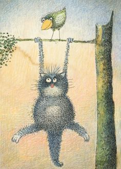 cat hanging from tree picture - Google Search