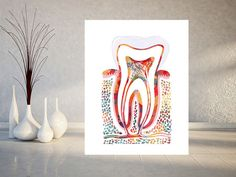 Molar Tooth watercolor print molar poster section with enamel dentin, pulp, root, gums, human anatomy art medical dental illustration, molar [800]. Packed for shipping with durable tubing Worldwide sh