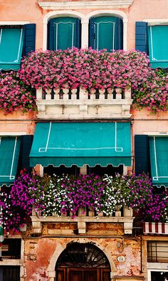 Murano, Italy  gorgeous flowers and love the building colors.