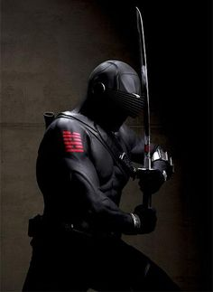 the master ninja | Ninjatown Preview