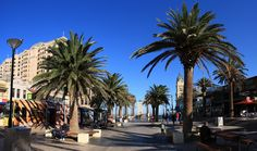 Located only 10km from the heart of Adelaide City, Glenelg is a charming seaside resort set on the long sandy white shores of Holdfast Bay. Glenelg is the site of South Australia's original mainland settlement in 1836. Glenelg is not only the place to see wild dolphins, but you can swim with them and it's a must do whilst in Adelaide. Glenelg is Adelaide's most popular and beautiful coastal region.