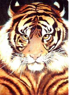 Tigre  Acrilicos.  100x 70