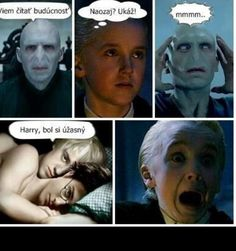 Perfect Boy, Luna Lovegood, Harry Potter Memes, Drarry, Draco Malfoy, Hogwarts, Haha, Comedy, Jokes
