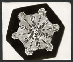 In American farmer Wilson Bentley attached a camera to his microscope and took what is believed to be the very first photo of a snowflake.