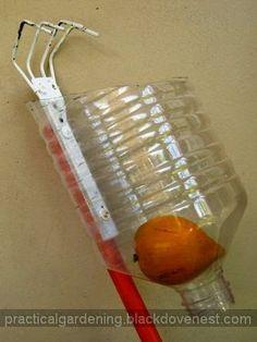 Practical Gardening: DIY Fruit Harvester Picker - Four Prongs