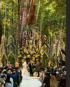 Vanity Fair's photos of Sean Parker's wedding. Christian Oth
