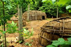 Iroquois Dwellings    Iroquois village including a bark longhouse and wigwams typical of the Tuscarora, Mohawk, Onondaga, Oneida and Seneca tribes found in the Northeast United States and parts of Canada.