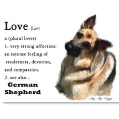 Description of a german shepherd