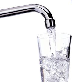 The Importance Of Water In Weight Loss