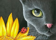 ilustración de Lucie Dumas