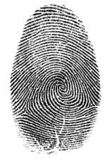 "Have family members press a finger on an ink pad and stamp it onto an index card. Mix them up to see if your kid can identify which print belongs to each ""suspect."""