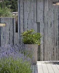 Berkeley Courtyard House - Board form concrete walls for the garden